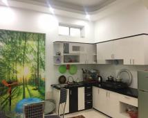 Bán nhà 55m2, 3 tầng đẹp tại Cam Lộ, Hồng Bàng, Hải Phòng, LH: 0796386283