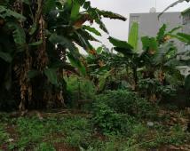 Cần bán đất phân lô 100m2 ở mặt đường Cái Tắt, An Đồng, An Dương, Hải Phòng