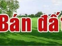 Bán Gấp 100m2 Đất Trịnh Xá Thiên Hương Thủy Nguyên Đường 5m Giá 500tr