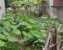 Chính chủ bán nhanh lô đất Khúc Thừa Dục 2, Vĩnh Niệm, Lê Chân, Hải Phòng.