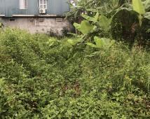 Cần bán lô đất mặt đường100m2 tại Vĩnh Khê, An Đồng, An Dương, Hải Phòng