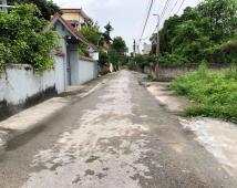 Bán lô đất đẹp đường 6m tại Bạch Mai, Đồng Thái, An Dương, LH: 0336.20.6658