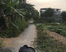 Bán lô đất 100m2 tại khu phân lô Vân Tra, An Đồng, An Dương, Hải Phòng
