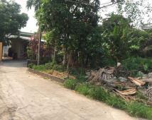 Bán đất tại ngõ Cam Lộ, Phường Hùng Vương, Hồng Bàng, Hải Phòng diện tích 85m2 giá 680 Triệu – Liên hệ: 090.462.1885