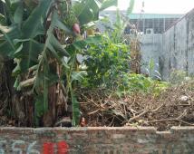 Bán đất mặt đường Đồng Hòa, Kiến An, Hải Phòng
