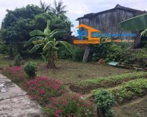 Chuyển nhượng lô đất tại phường Đa Phúc, Dương Kinh, Hải Phòng