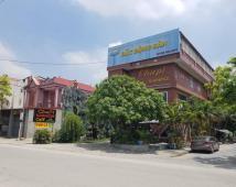 Bán lô đất biệt thự sau Café Cha Pi, Cái Tắt, An Đồng, An Dương, LH: 0336.20.6658
