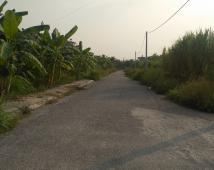 Bán lô đất cực đẹp tại chung cư An Hồng,An Dương 790 triệu