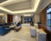 Bán Biệt Thự VinCom – Pari, Hải Phòng. DT: 200m2. Giá 15 tỷ