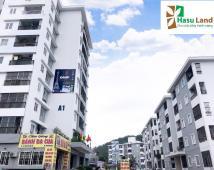 Bán căn hộ chung Bắc Sơn 51m2, 2p ngủ, giá 420tr