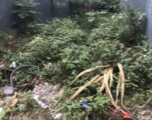 Chính chủ nhờ bán lô đất tại tổ 7 thị trấn An Dương  Hải phòng Gía 690 triệu