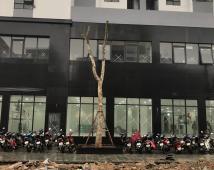 Bán kiot chung cư Hoàng Huy