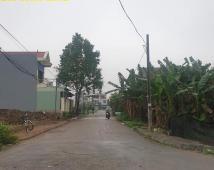 Bán lô đất tdc Đồng Dứa , Hải An ,Hải Phòng