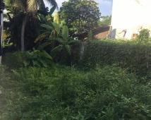 Bán độc quyền mảnh đất trong ngõ trường tiểu học Vạn Hương, Đồ Sơn, Hải Phòng