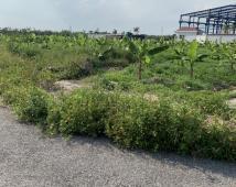 Bán lô đất 186m2 ngang 10m tại chung cư Đồng Hải, An Hưng, An Dương, Hải Phòng – LH: 0904.621.885