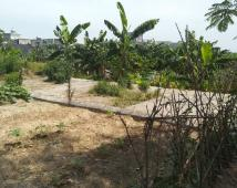 Bán lô đất ngay ngã tư Quán Toan chỉ 5.8 triệu /m ngõ 3 m oto đỗ cửa