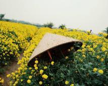 Bán lô đất 60m2 Đồng Hòa, Kiến An