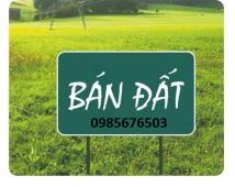 - Cần bán nhanh đất ngõ 422 , Đồng Hòa , Kiến An . 0985676503