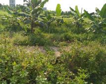 Bán lô đất 650 triệu, đường 12 m tại trung cư Đồng Hải,An Dương