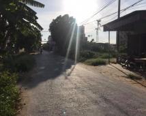 Bán đất TĐC Đồng Dứa – Hải An – Hải Phòng