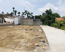 Bán đất phân lô giá rẻ tại Đồng Quy, Phù Liễn, Kiến An giá chỉ hơn 200tr