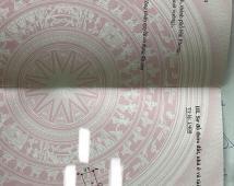 50,1m2 TDP 5 Hòa Nghĩa – Dương Kinh