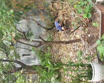 Bán lô đất tại ngã 6 quán trữ