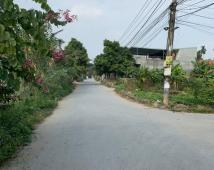 Bán lô đất tại Minh Kha,Đồng Thái,An Dương.Giá 780 triệu .LH: 0981 265 268