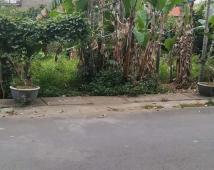 Bán đất tại Đặng Cương,An Dương.Giá 1 tỷ.LH: 0981 265 268
