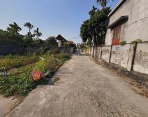 Bán lô đất 87,5m2 tại Xuân La, Thanh Sơn, Kiến Thuỵ, Hải Phòng