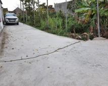 Bán lô đất 125m2 đường 4,5m tại Cốc Liễn, Minh Tân, Kiến Thụy – LH: 0904.621.885