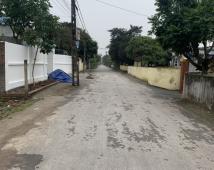 Bán lô đất 446m Bát Trang, An Lão giá đầu tư 6,xtr/m