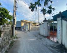 Bán đất mặt đường liên thôn cực đẹp tại Hoa Động Thủy Nguyên