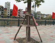 Bán nhanh lô đất mặt phố đi bộ Thế Lữ