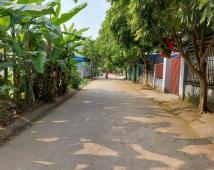 Bán lô đất thổ cư diện tích 121m2 đẹp nhất tại Khánh Thịnh,An Hồng,An Dương