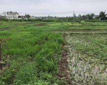 Bán đất tại xã trọng điểm nông thôn mới Thanh Sơn ,Kiến Thụy Lh :0356.019.093