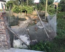 Bán đất Xích Thổ, Hồng Thái, ô tô đỗ cửa, 61,5m2