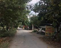 Gia đình e cần bán lô đất tại thôn hầu lâm động , thuỷ nguyên , hp