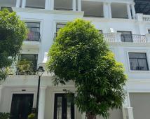 Bán Shop House 4 tầng 69m2 VinHomes Marina, Lê Chân, Hải Phòng 6Tỷ, MT5m,B