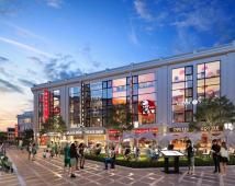 Dự án Thủy Nguyên Mall, Sinh lời ngay, lãi kép lâu dài, kinh doanh các loại mặt hàng
